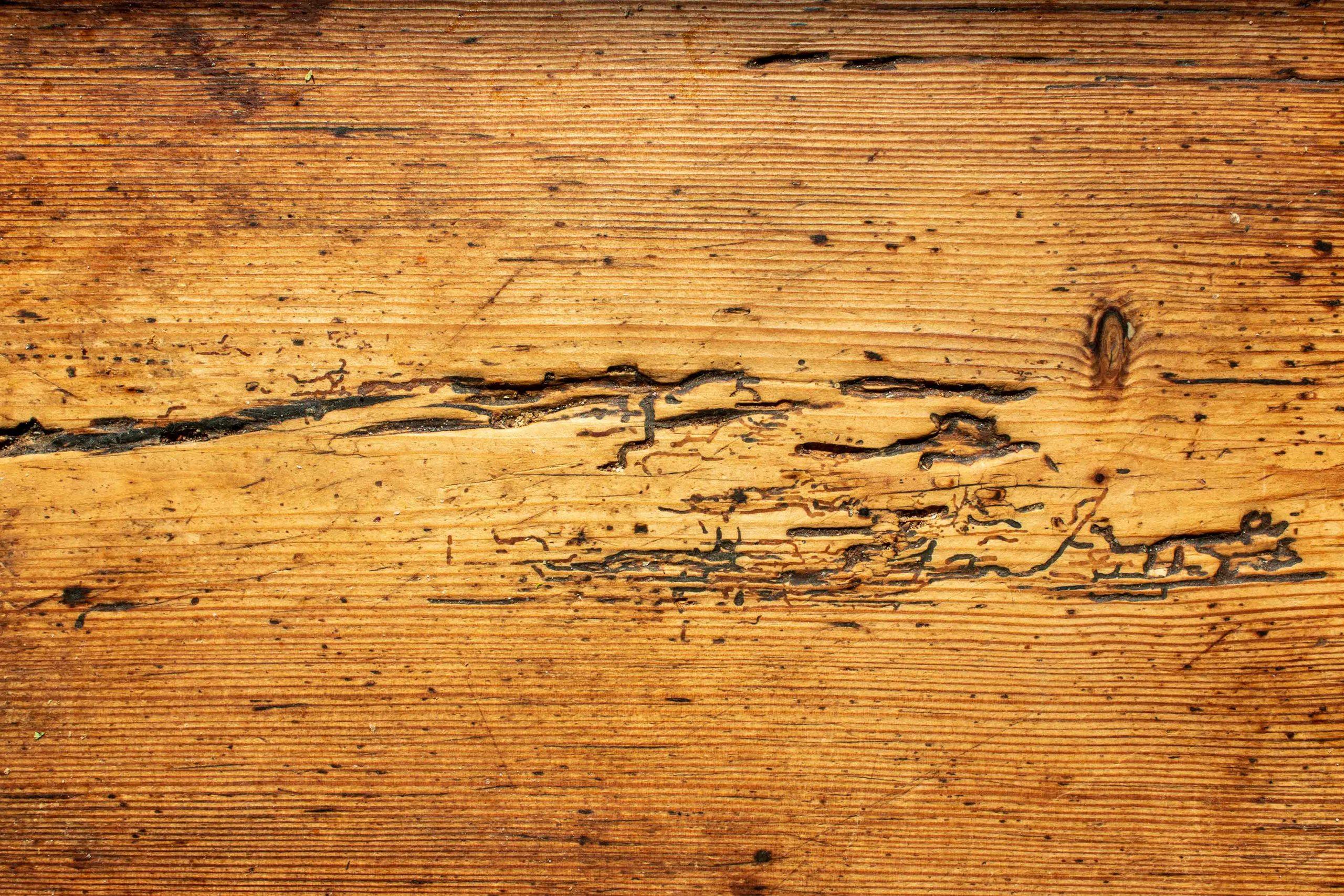 alter Küchentisch, Struktur der Holzplatte
