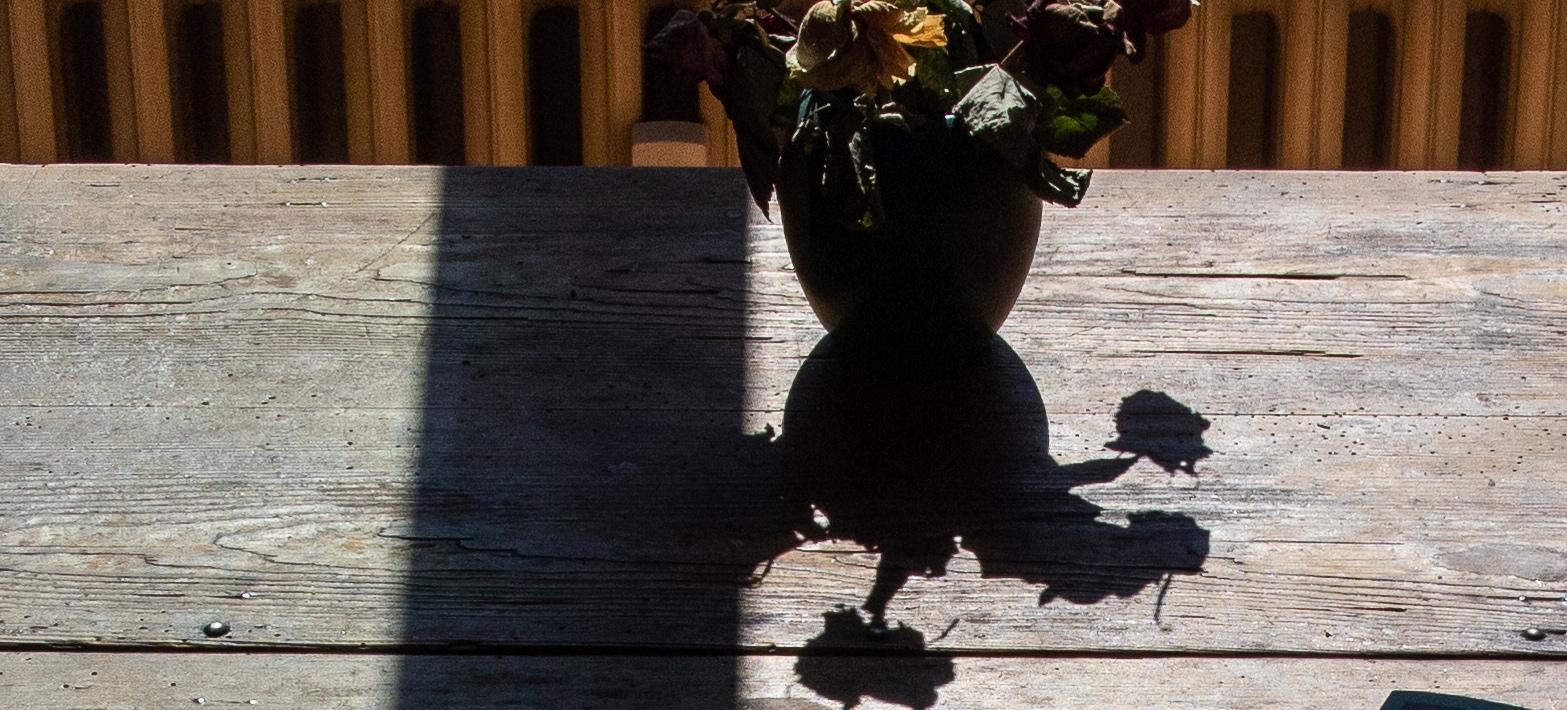 alter Tisch, Schatten von Blumen und Fensterrahmen
