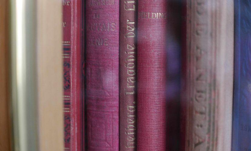 mit Büchern leben antike Buchrücken