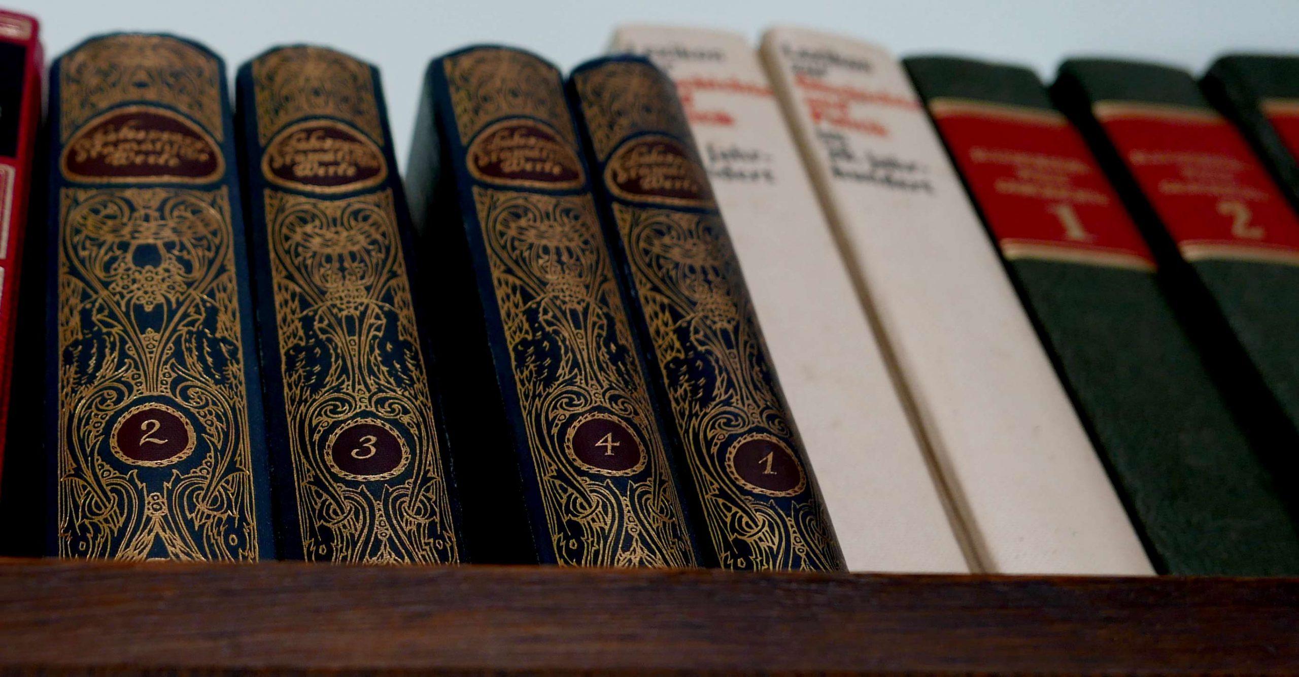 leben mit Büchern Bücherschrank
