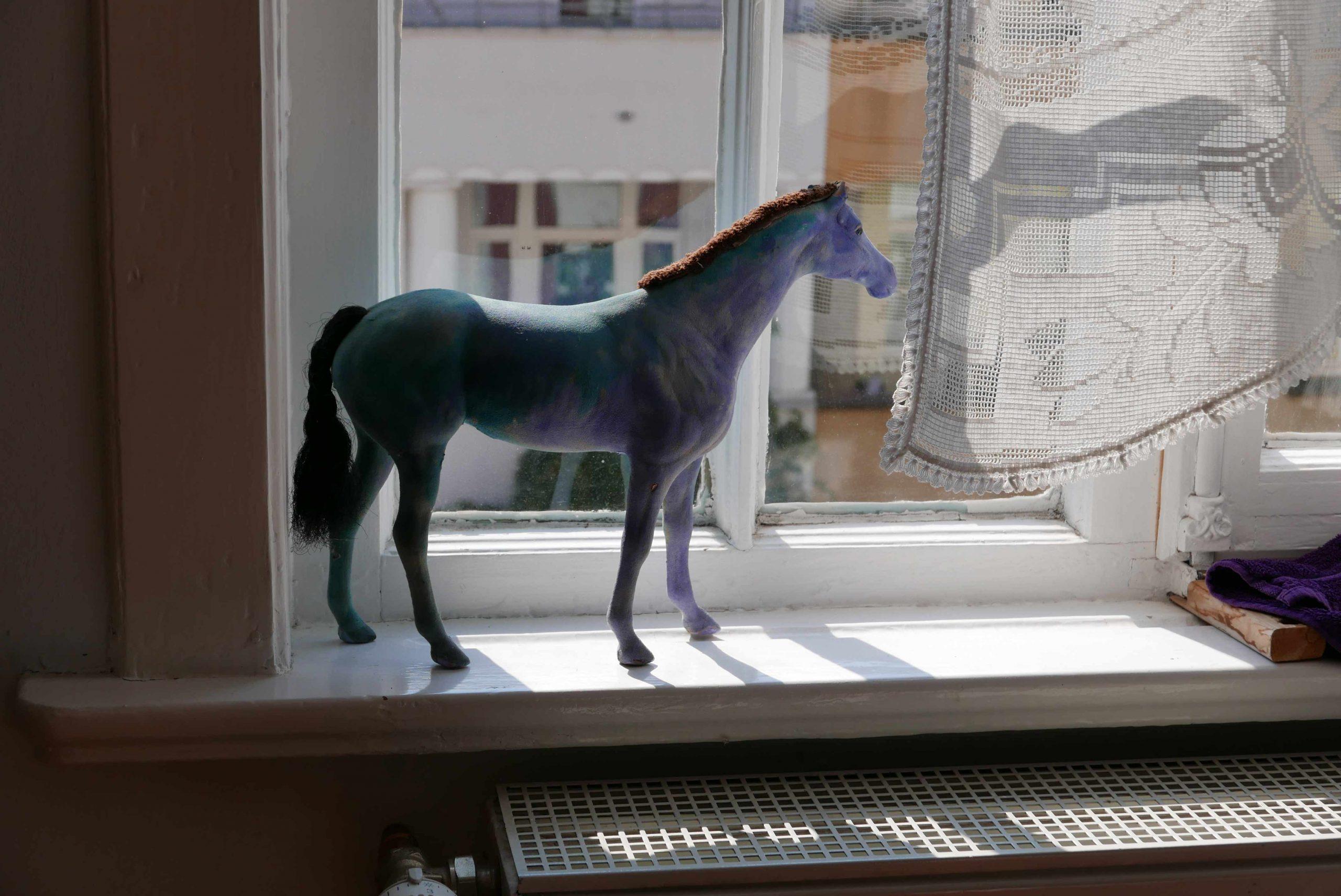 Pferd aus dem Schlafzimmerfenster blau
