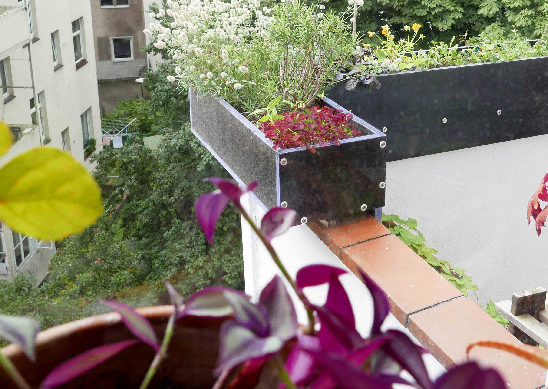Blumenkasten Brüstungserhöhung im Altbau aus der Speisekammer gesehen